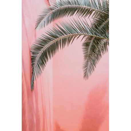 Affiche Palm on pink 30 x 40 cm