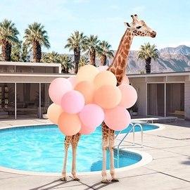 #SUMMERMOOD 💛 Bon premier jour d'été à tous ☀️ Ça devait être hier, mais clairement il y a eu un problème je pense, la pluie, le vent et compagnie ! Comme ça n'allait pas, le premier jour d'été est officiellement décalé à aujourd'hui, ça nous semble better ☀️😎🌴⛱👙 📷 @paulfuentes_photo — #ete85 #conceptstore #paris #paris3 #vertbois #marais #mood #summer #summervibes #girafe #piscine #instapic #instamood #pool #sunnymood #sunlover  #mondaymood